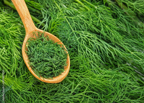 Photo Dill weed. Fresh dill greens. Fennel  in wooden spoon