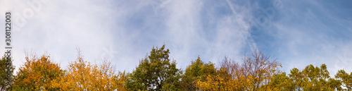Photo Autumn time