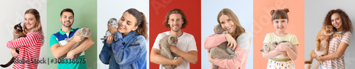 Fotografia Collage with different people and their cute cats on color background