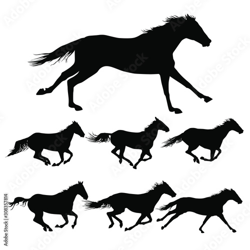 Canvas Print Vector silhouettes of horses running.