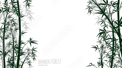 Photo Bamboo forest background