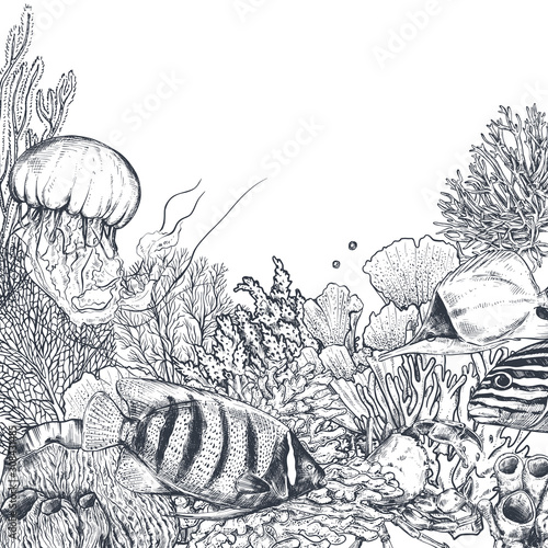Photo Vector monochrome coral reef background with tropical fishes