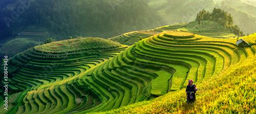 Fotografia Mu Cang Chai, Vietnam landscape terraced rice field near Sapa