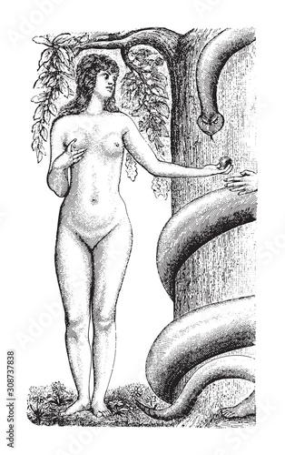 Valokuvatapetti Eve / vintage illustration from Meyers Konversations-Lexikon 1897