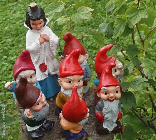 Canvas Print Cute garden Gnomes-snow White and the seven Dwarfs