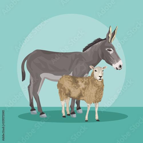 Valokuva donkey and sheep animals farms