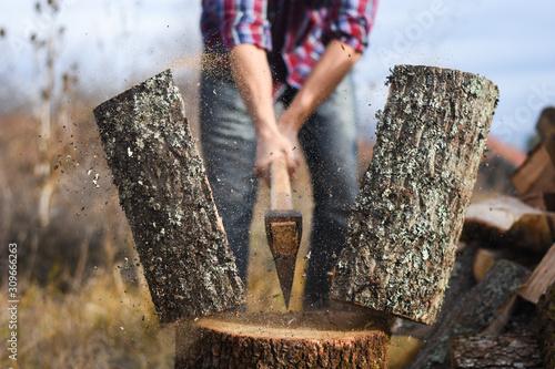 Fototapeta Lumberjack chopping wood for winter, Young man chopping woods with an axe