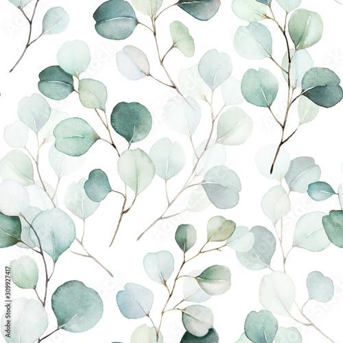 Fototapeta kompozycja zielonych liści i gałęzi na białym tle