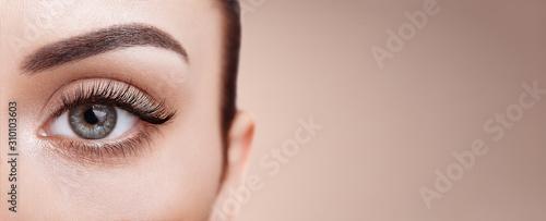 Slika na platnu Female Eye with Extreme Long False Eyelashes