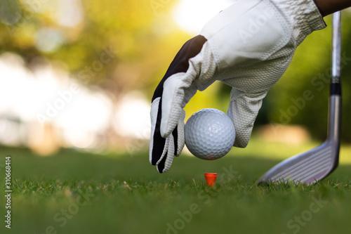 Golf ball on green grass field. sport golf club,Hand hold golf ball with tee on golf course