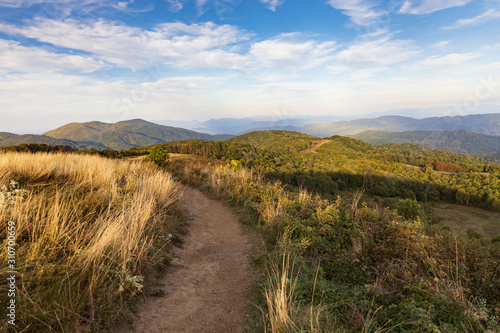 Appalachian Trail at Max Patch Tapéta, Fotótapéta