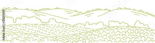 Fotografia Field landscape