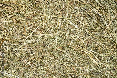 Fotografiet background of straw