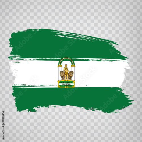 Tela Flag of Andalusia brush strokes