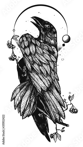 Photo Hand drawn illustration with a Raven or Crow