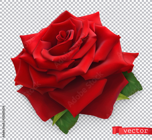 Wall mural Red Rose. 3d realistic vector object