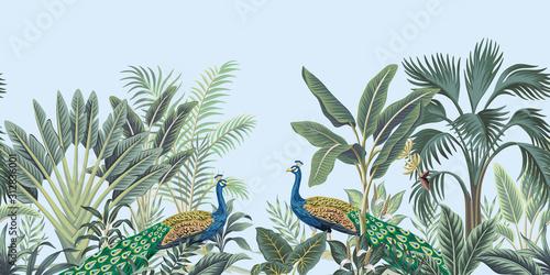Carta da parati Tropical vintage peacock bird, palm tree and plant floral seamless border blue background