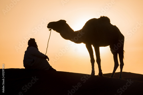 Fotografie, Obraz Bedouin and camel on way through sandy desert Beautiful sunset with caravan on S