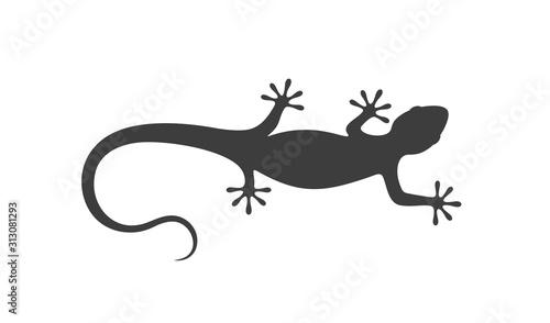 Fotografia Lizard logo.  Isolated lizard on white background