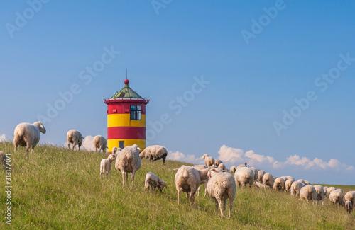 Carta da parati Pilsumer Leuchtturm