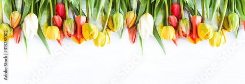 Beautiful celebration background. Bunch of multicolored tulips withe waterdrops on a white background. Copy space, flat lay #313261002