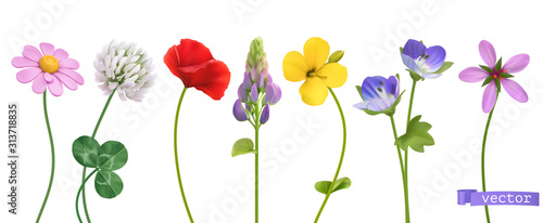 Wildflowers. 3d realistic vector icon set