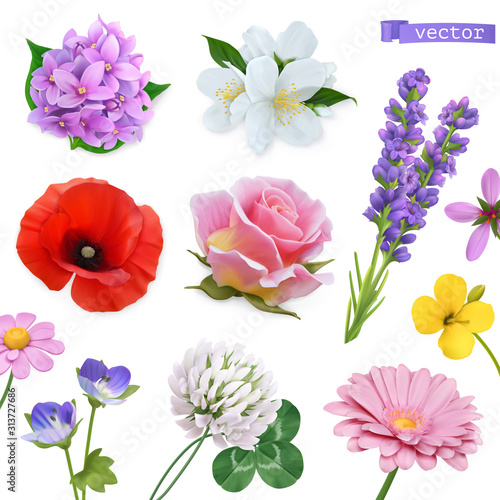 Wall mural Spring flowers. Lilac, jasmine, poppy, rose, lavender, clover, chamomile. 3d realistic vector icon set