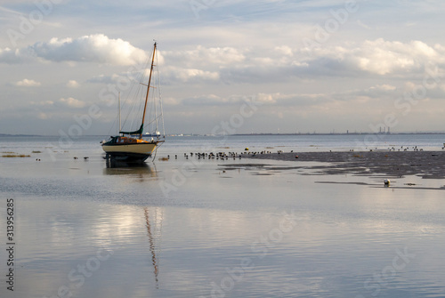 Boats and birds at Old Leigh, Leigh-on-Sea, Essex, England Fototapeta