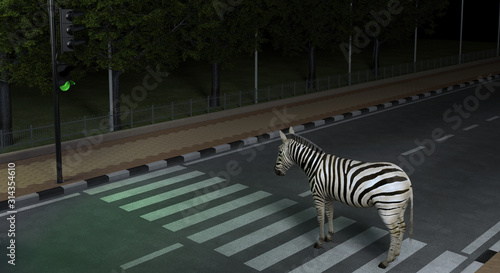 Foto Wild animal zebra crosses the road at the crosswalk in the night city observing the Traffic Laws
