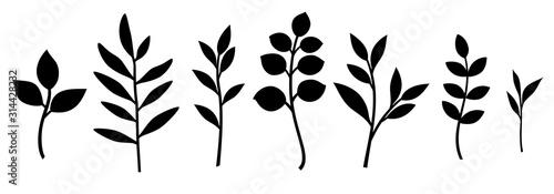 Photo Set of decorative leaf silhouette