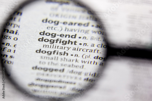 Tableau sur Toile Word or phrase Dogfight in a dictionary.