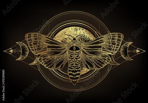 Fotografia Golden moth over sacred geometry sign, isolated vector illustration