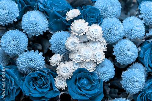 Bouquet of roses and chrysanthemums close up. Beautiful blue flower backgroun...