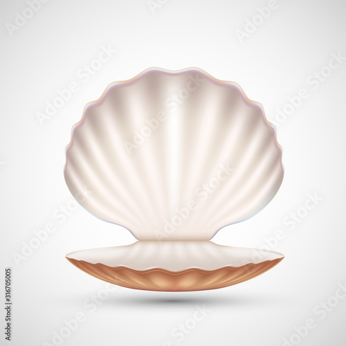 Fotomural Open empty seashell icon isolated on a white background