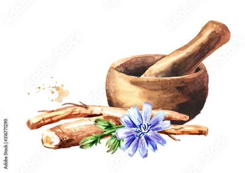 Obraz na płótnie Mortar and chicory root