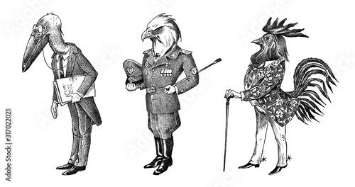 Leinwand Poster Bird man, eagle and marabou head in military uniform