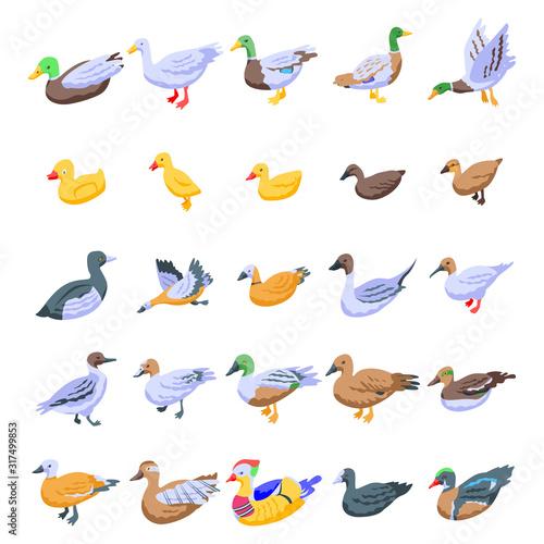 Valokuva Duck icons set