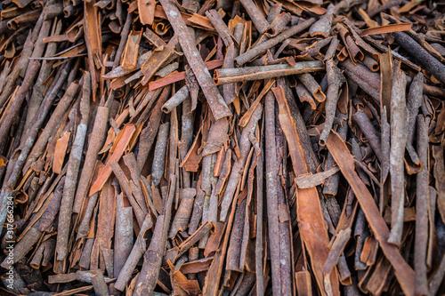 Vászonkép A bunch of dried cinnamon sticks