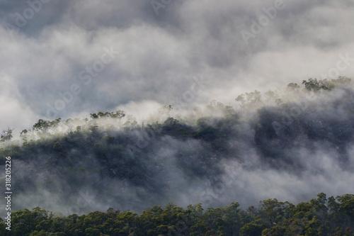 3.Grampians mountain, Victoria, Australia- March 2019: Australian mountains surrounded by morning fog