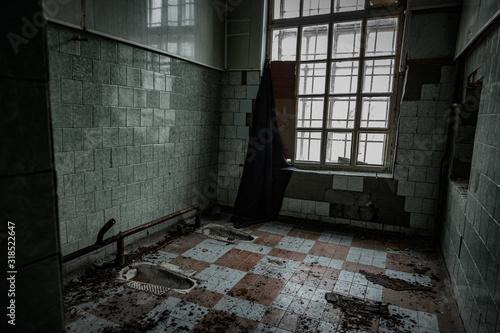 Stampa su Tela Inside old Orlovka Asylum for the insane in Voronezh Region