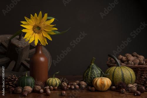 Fototapeta Still life with a sunflower, pumkins, wheel and walnuts in a classical fine art