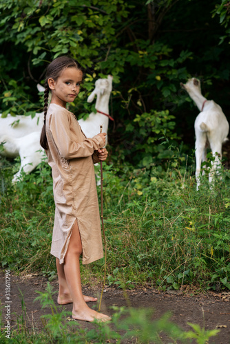 Tablou Canvas Little girl goatherd in forest