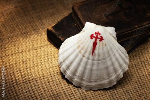 Fotografie, Obraz Symbol of the pilgrimage journey to Santiago de Compostela