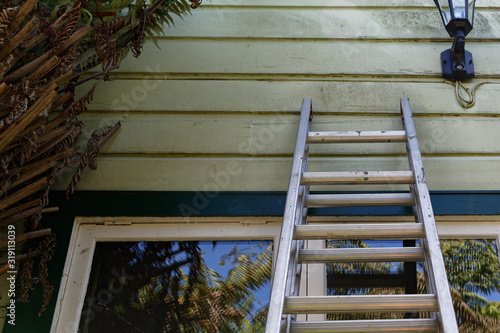 Wallpaper Mural A ladder is leaning against the wall of a green weatherboard house