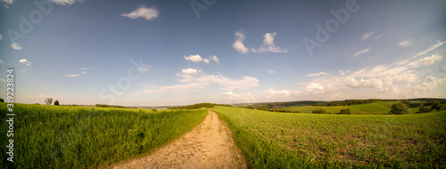 Fotografie, Obraz Country road through the fields