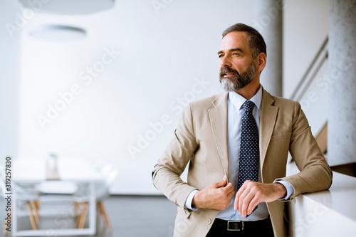 Wallpaper Mural Portrait of senior businessman in the office