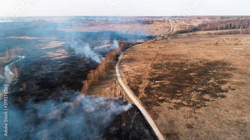 Obraz na plátně Forest and field fire