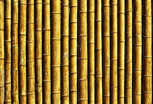 Fotografía Detail Shot Of Bamboos