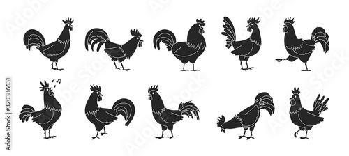 Fotografiet Cock of animal isolated black,simple set icon