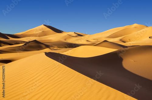 Fototapeta Sand dunes in the Arabian desert